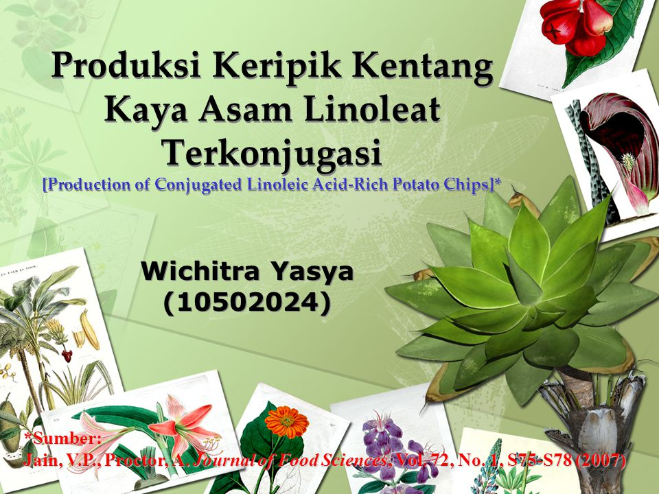 Produksi Keripik Kentang Kaya Asam Linoleat Terkonjugasi [Production of Conjugated Linoleic Acid-Rich Potato Chips]*